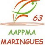 Logo AAPPMA Maringues Nov 2015
